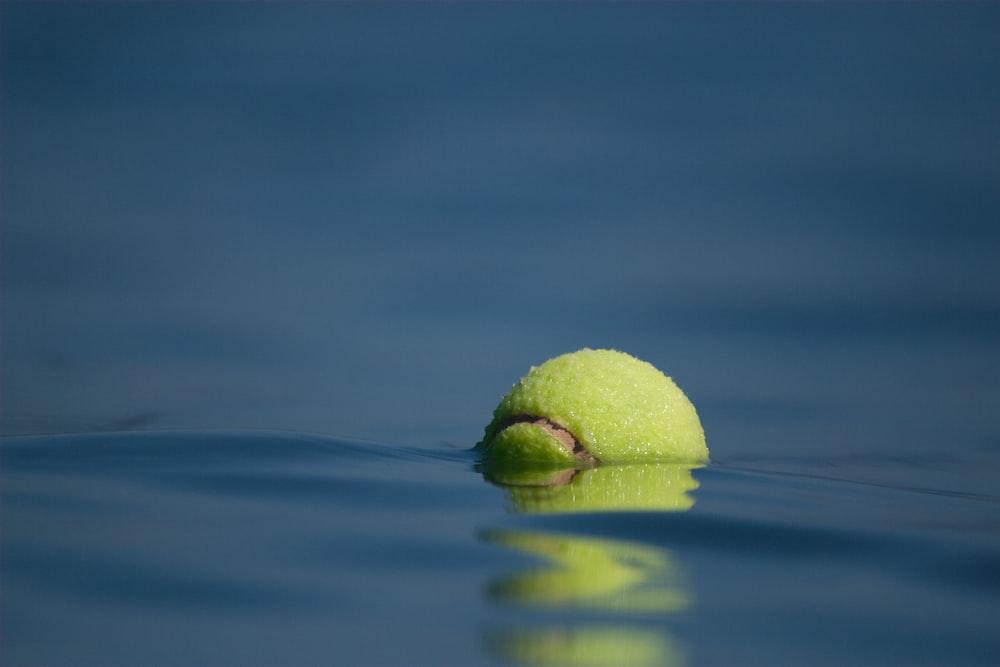 green tennis ball on blue water