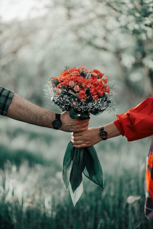 Flower Love Images Download Free Pictures On Unsplash
