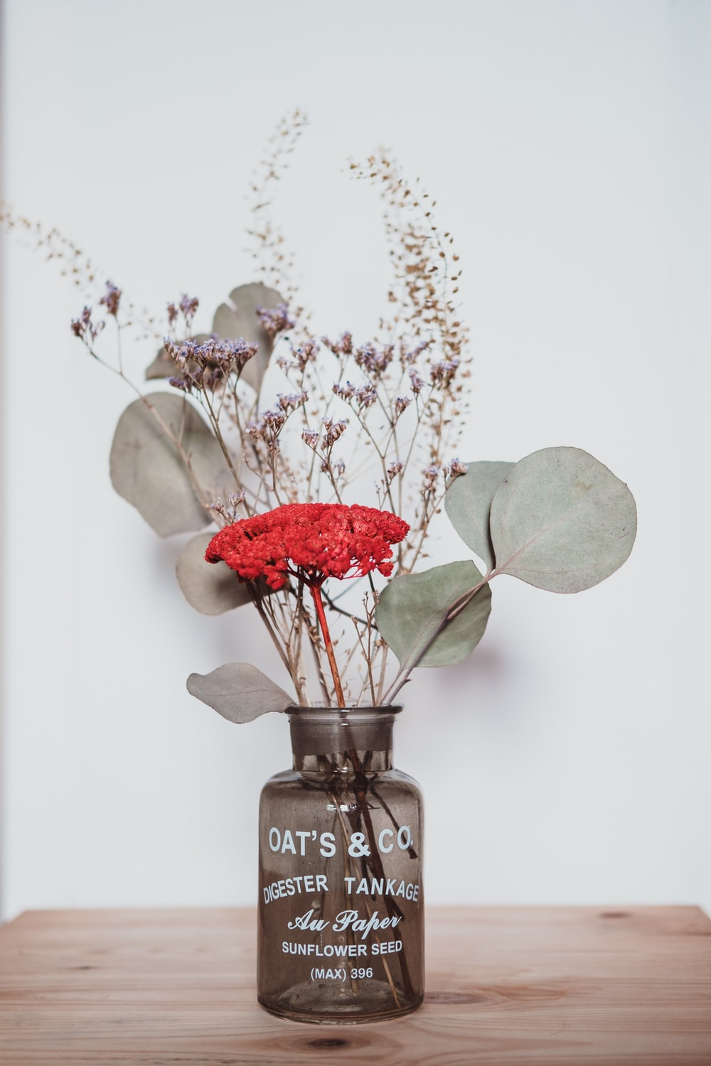 Dried Flower Pictures Hd Download Free Images On Unsplash