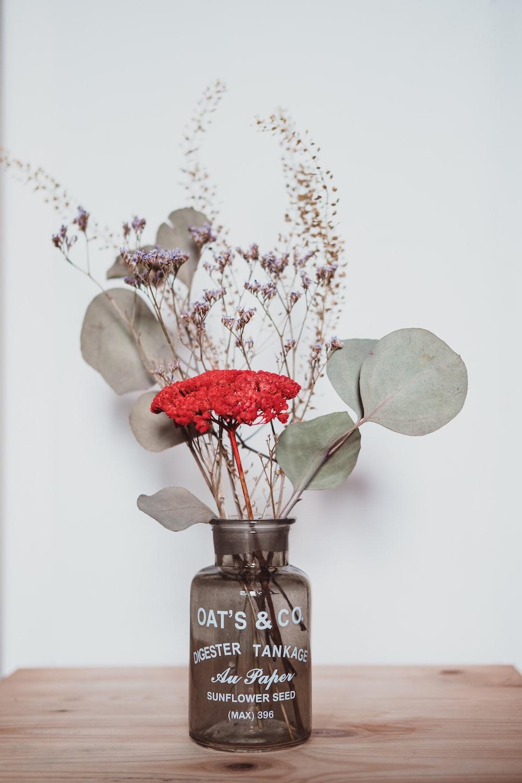red rose in glass vase