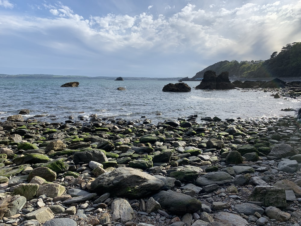 gray rocks on sea shore during daytime