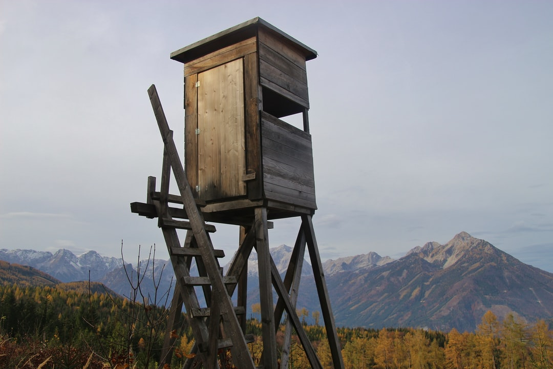 Deer stand in the alps, in Upper Austria. In the background the Totes Gebirge mountain range. Vorderstoder, Austria, Europe.
