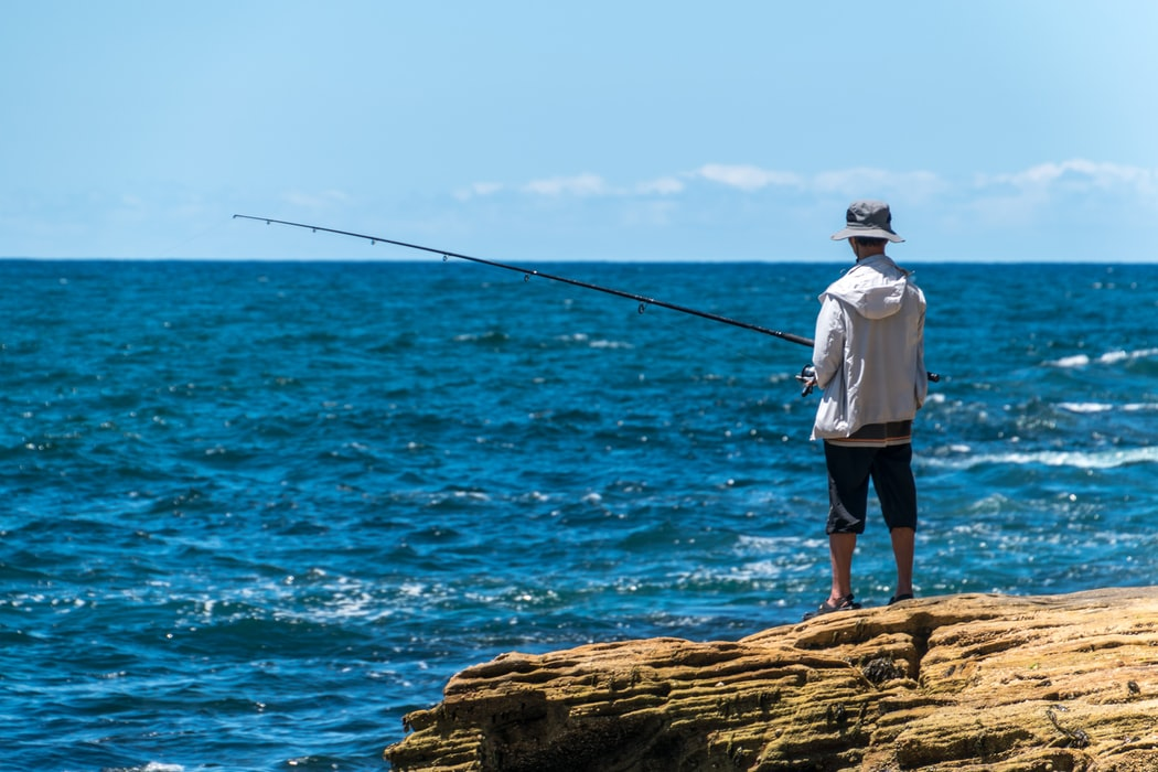 Sydney, One of the fishing destinations in Australia