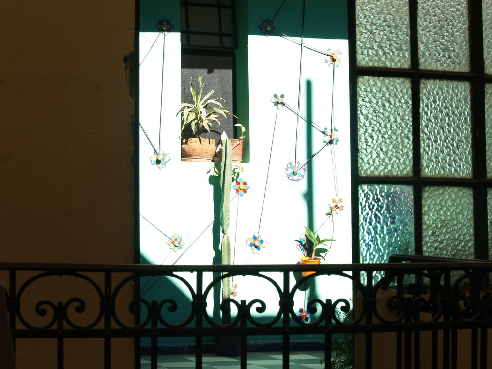 white floral window curtain during daytime