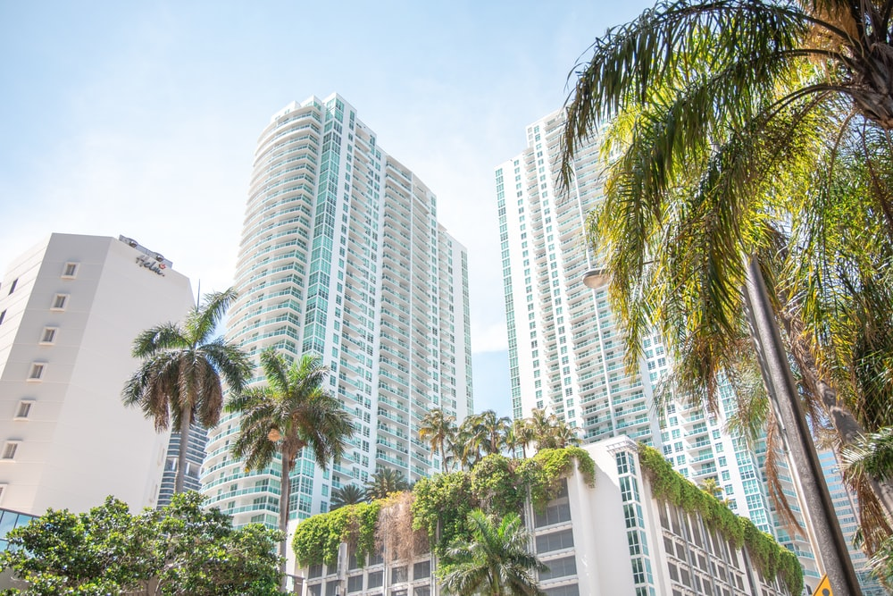 green palm trees near white high rise buildings during daytime