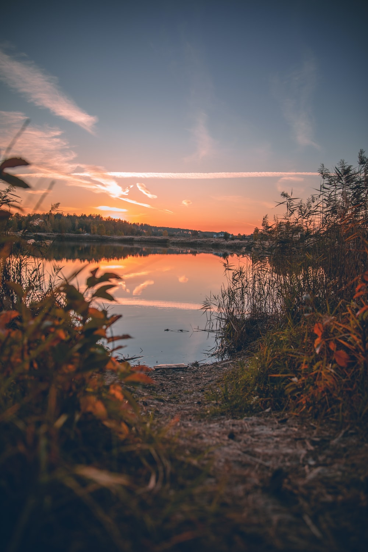 green grass near lake during sunset