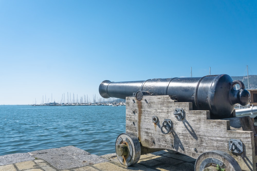 black and gray canon near body of water during daytime