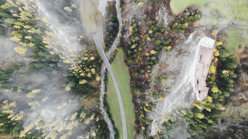 aerial view of road between green grass and trees