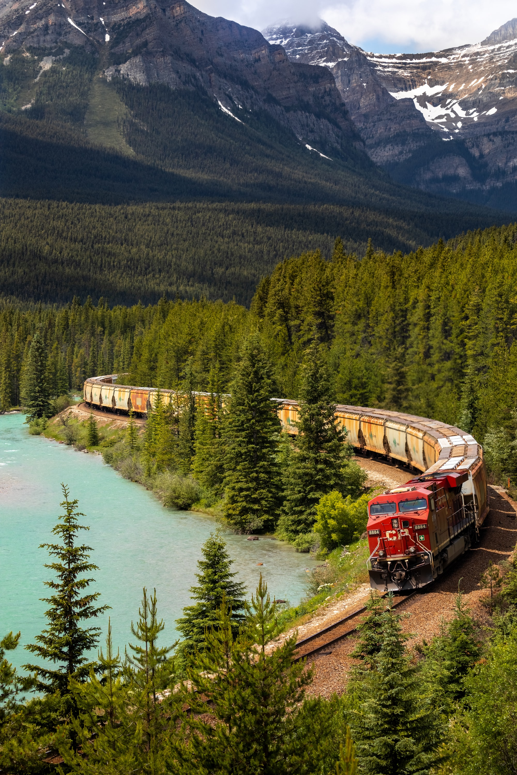 A freight train winds it way along a river through a pine forest.