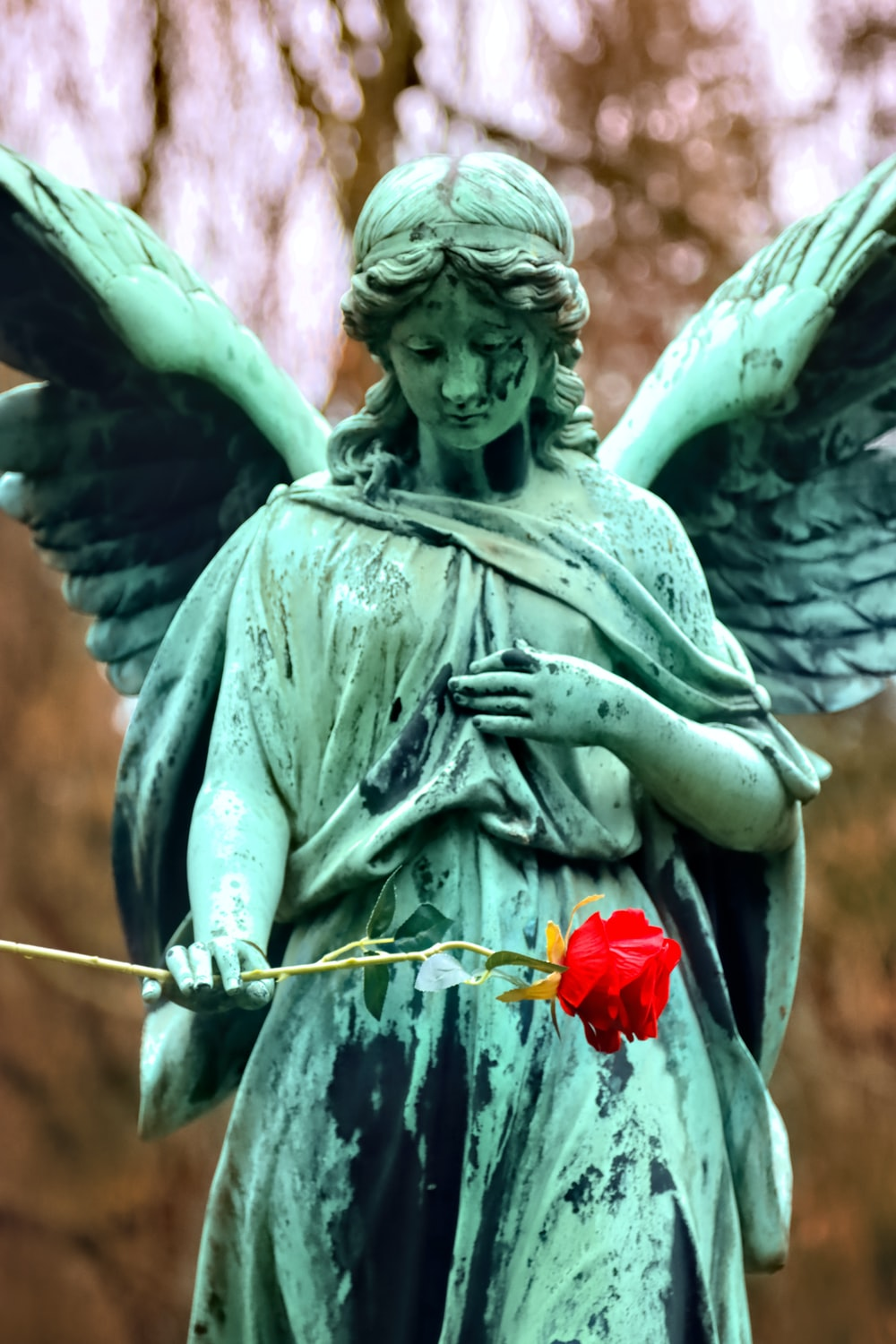 man holding red rose statue