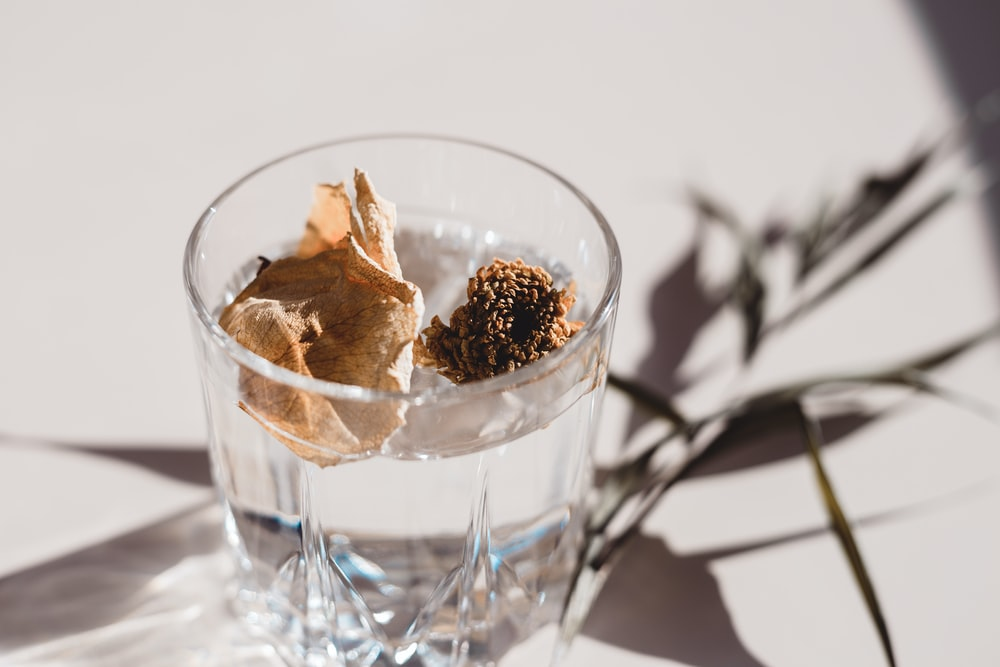 brown ice cream in clear glass cup