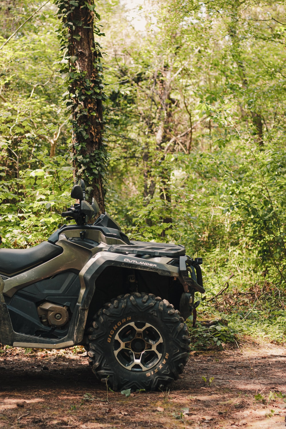 black and gray atv in forest during daytime
