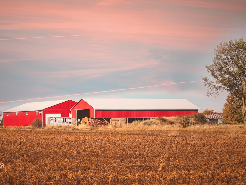 red and white barn house on brown grass field during daytime