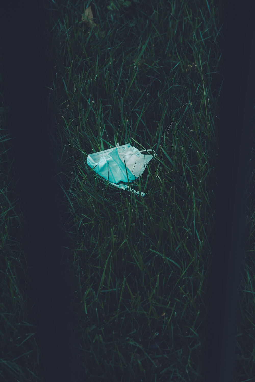 white plastic bag on green grass