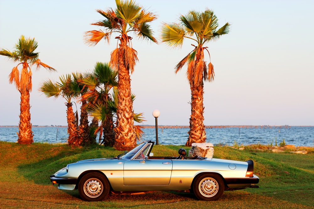white convertible car parked beside palm tree during daytime