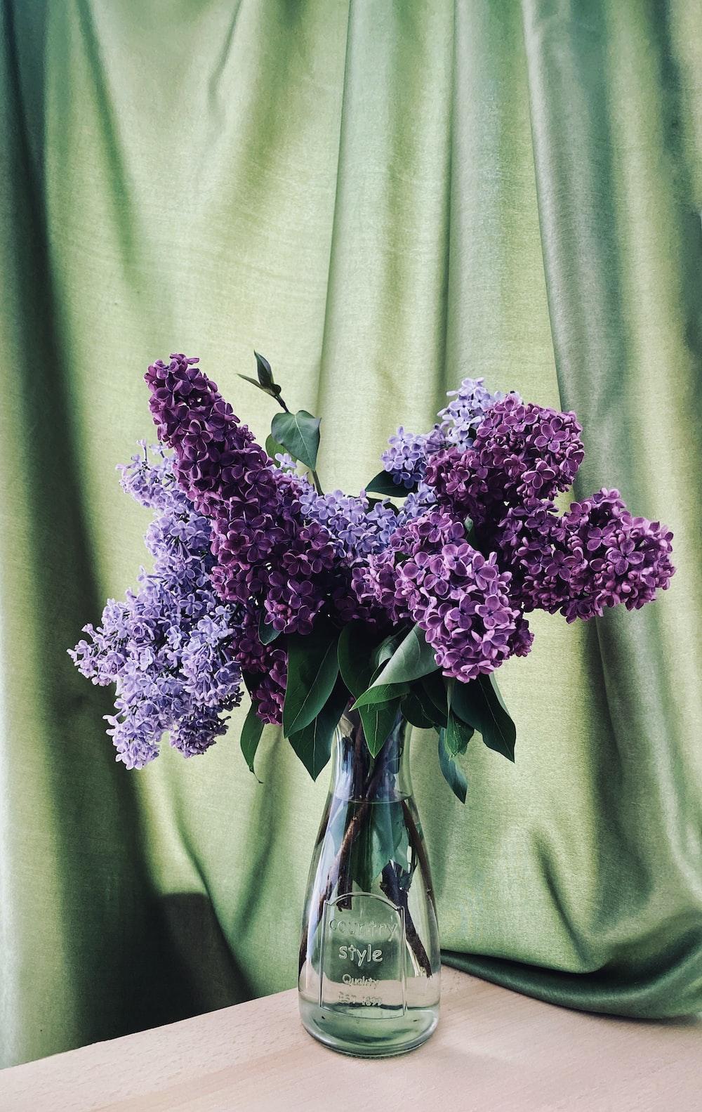purple flowers on green textile