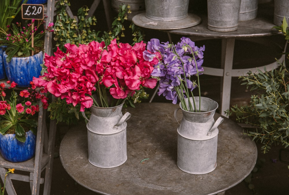 red flowers in gray concrete pot