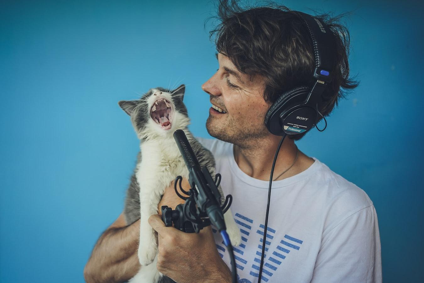 cat-sounds-explained
