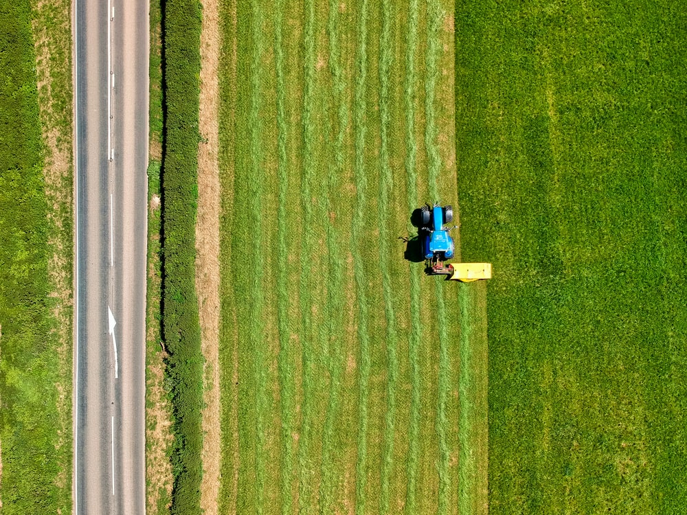 2 people sitting on green grass field during daytime