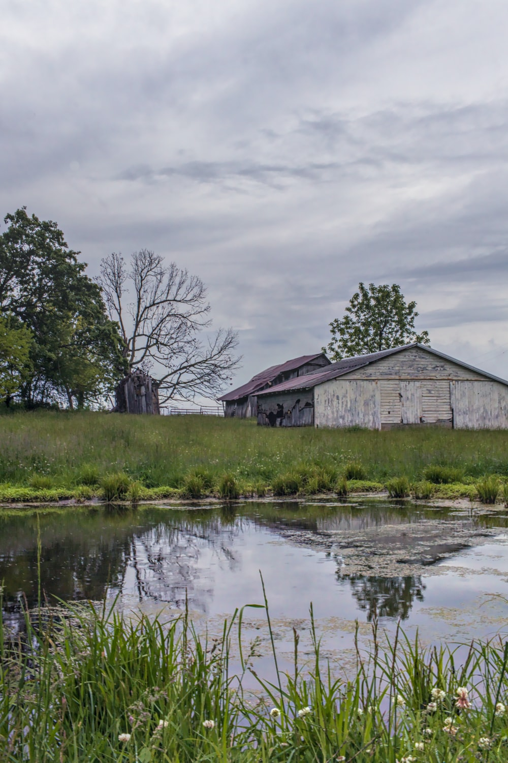 brown wooden house near lake under cloudy sky during daytime