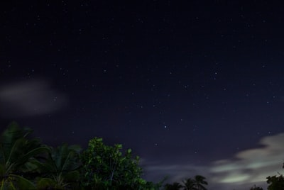 green trees under blue sky during night time barbados teams background