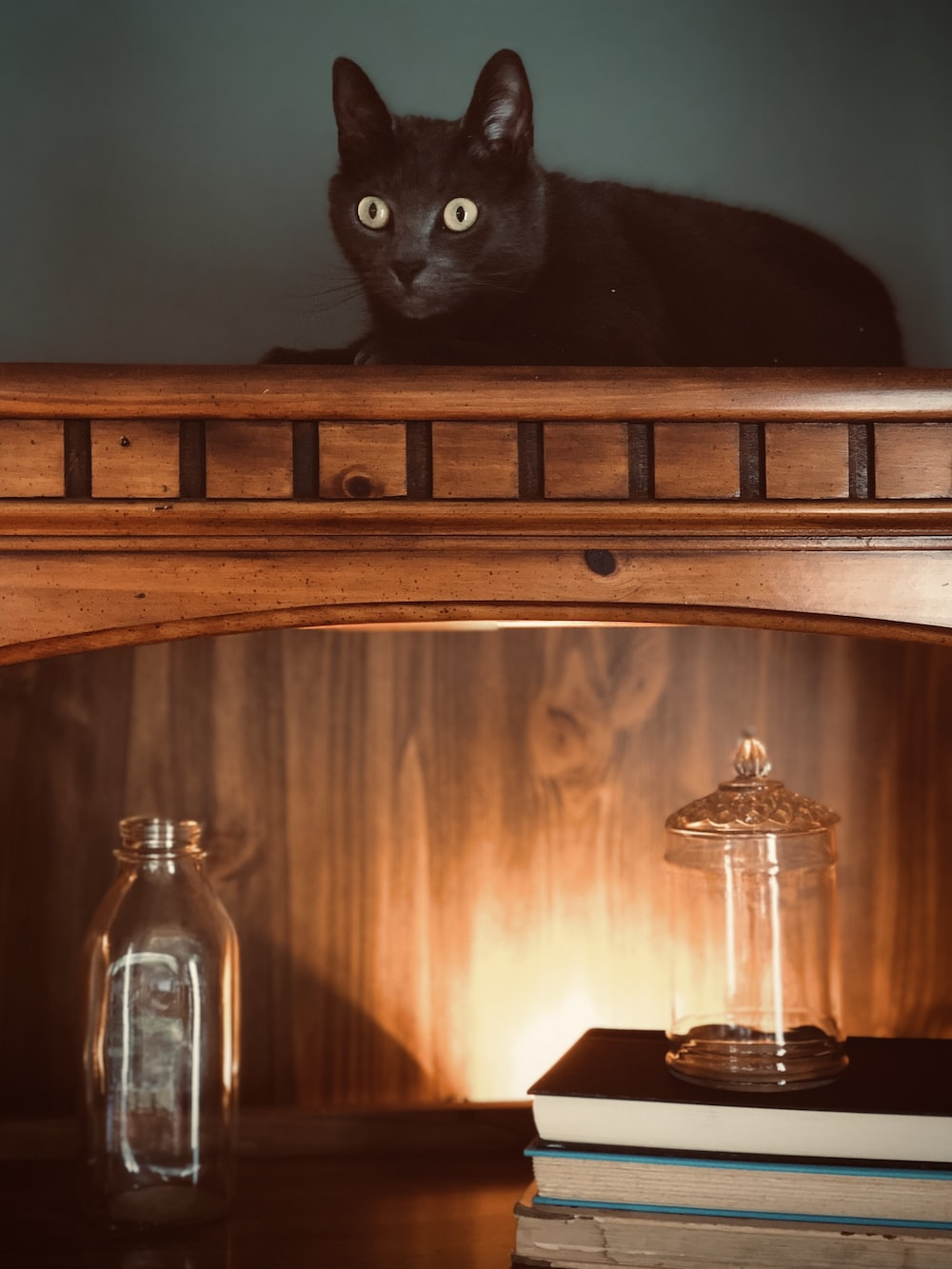black cat on brown wooden cabinet