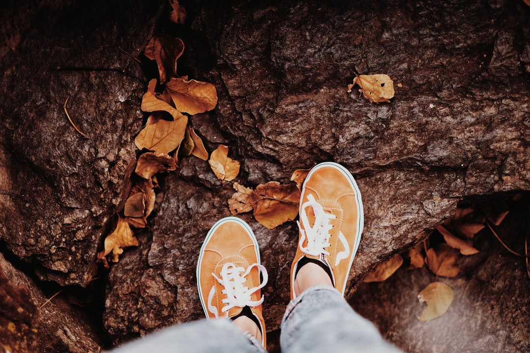 orange sneakers on a rock with dried leaves around