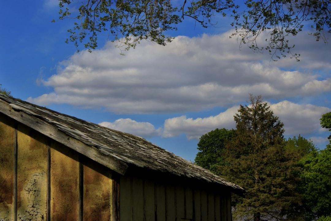 Outside on the farm