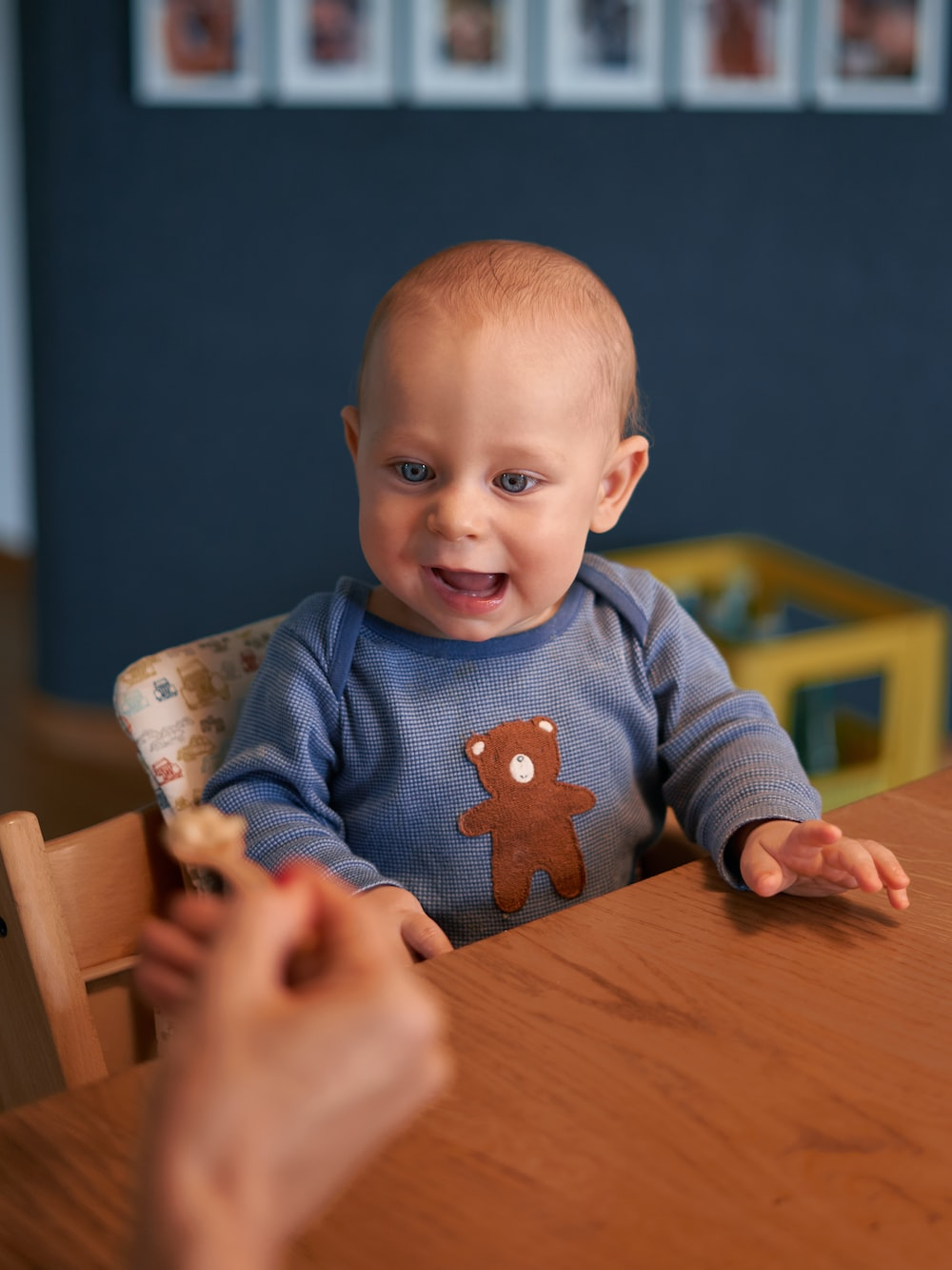 baby in blue sweater sitting on brown wooden high chair