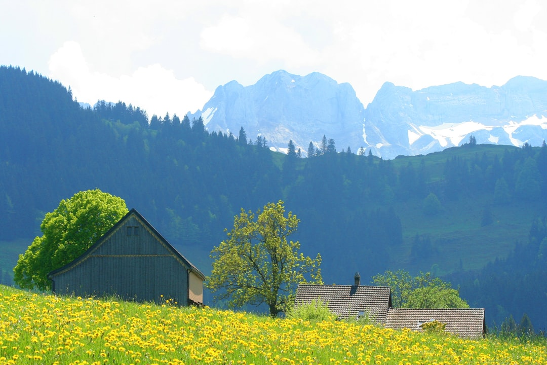 Small farm in front of the Alpstein mountains in Appenzell Innerrhoden