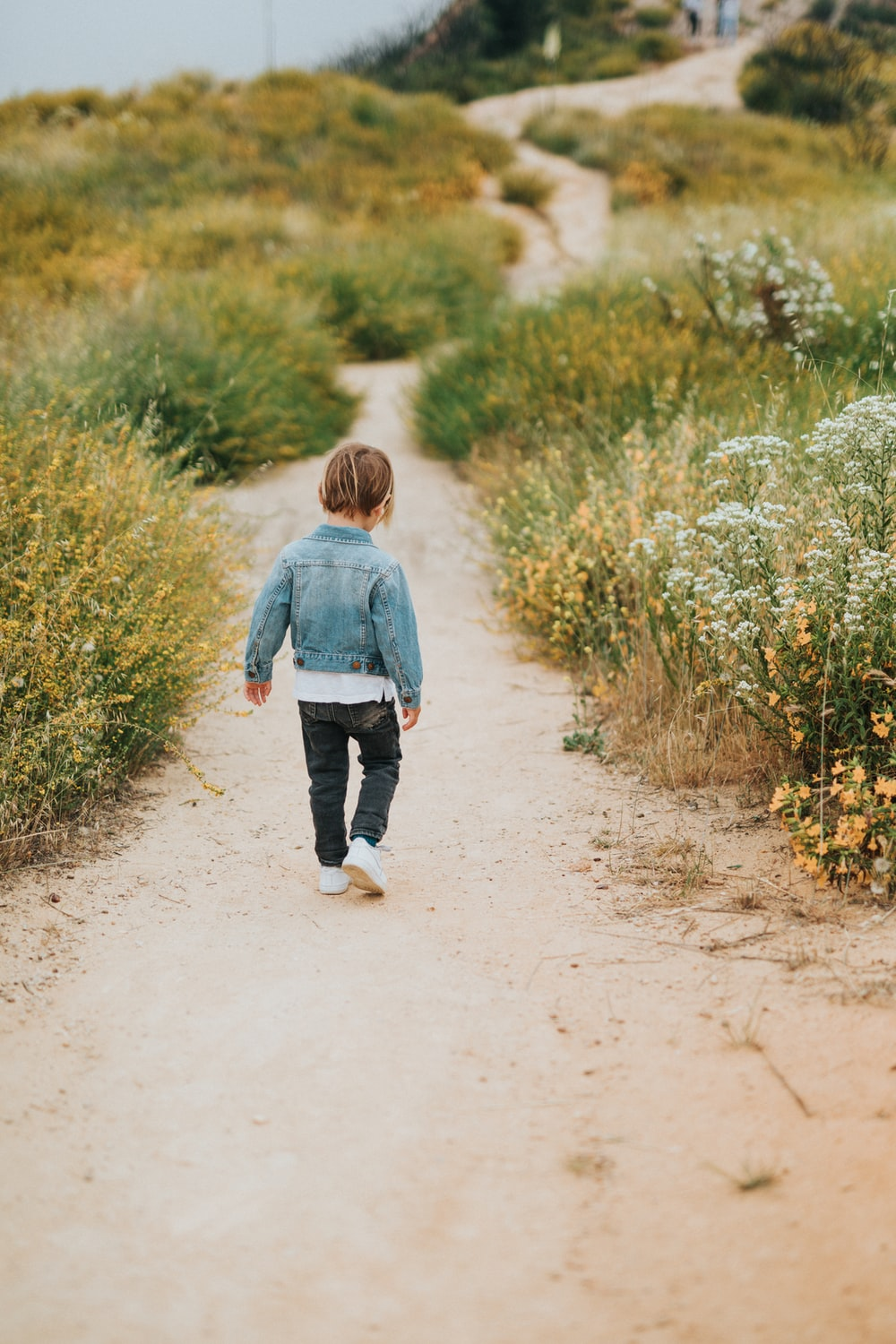 boy in blue sweater walking on dirt road during daytime