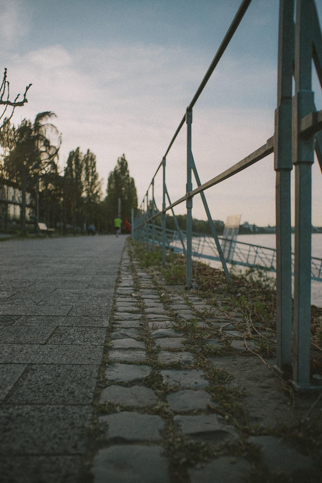 Riverside at the Rhine.