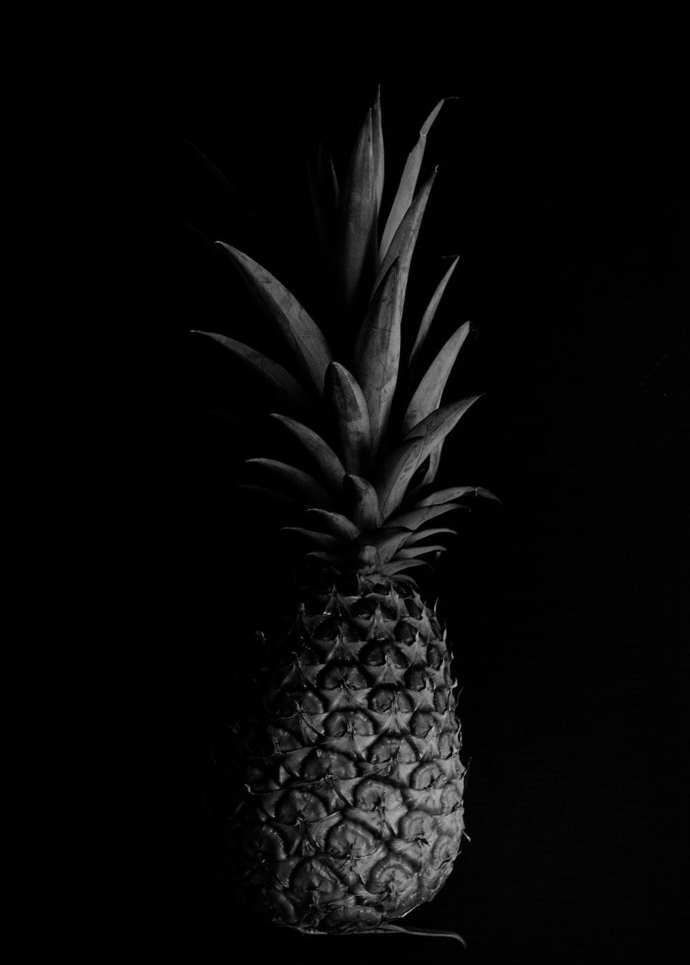 pineapple fruit on black background