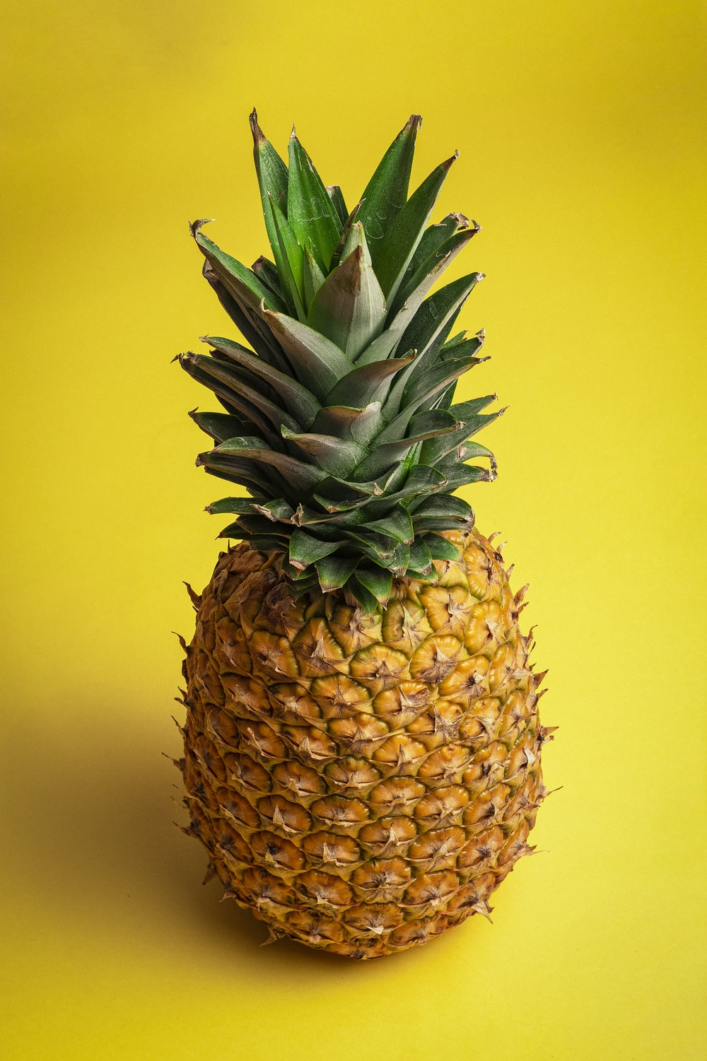 pineapple fruit with yellow background