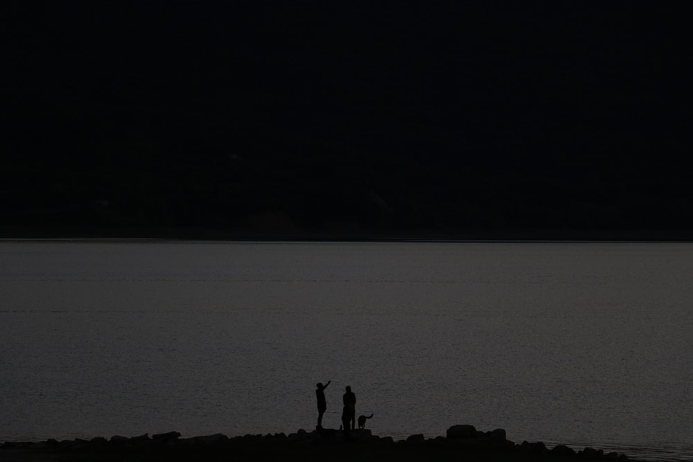 silhouette of 2 person standing on rock formation near body of water during daytime