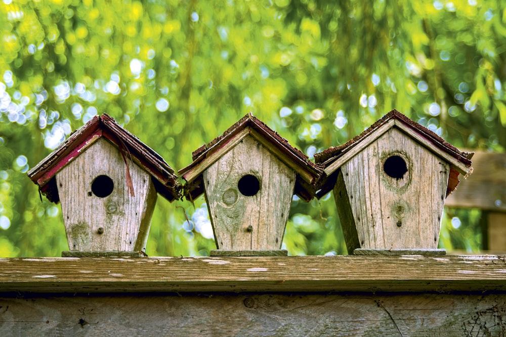 brown wooden bird house on green grass during daytime