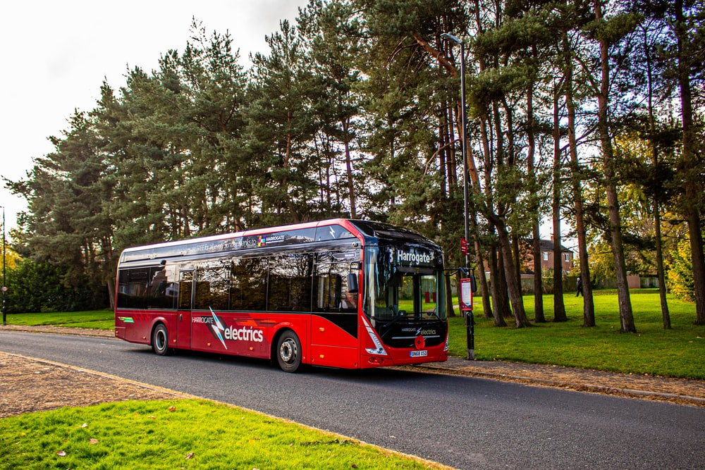 red bus on road near trees during daytime