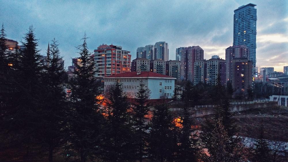 high rise buildings near trees under gray sky