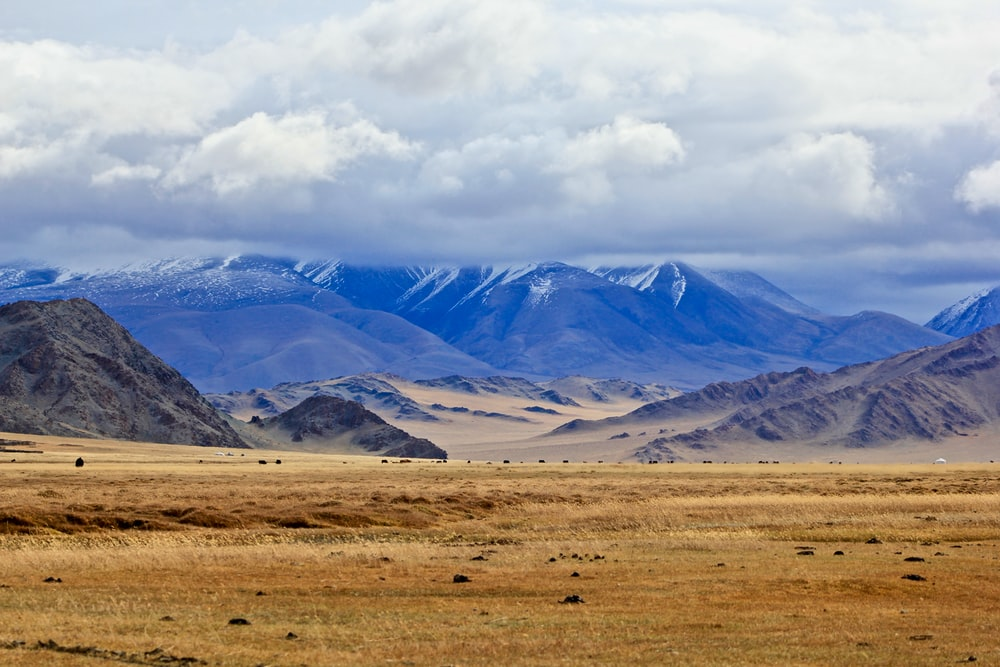 brown grass field near snow covered mountains during daytime