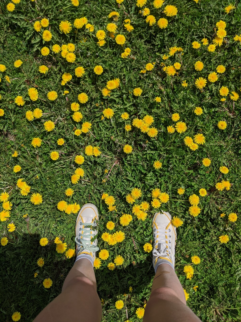 person in white sneakers standing on yellow leaves