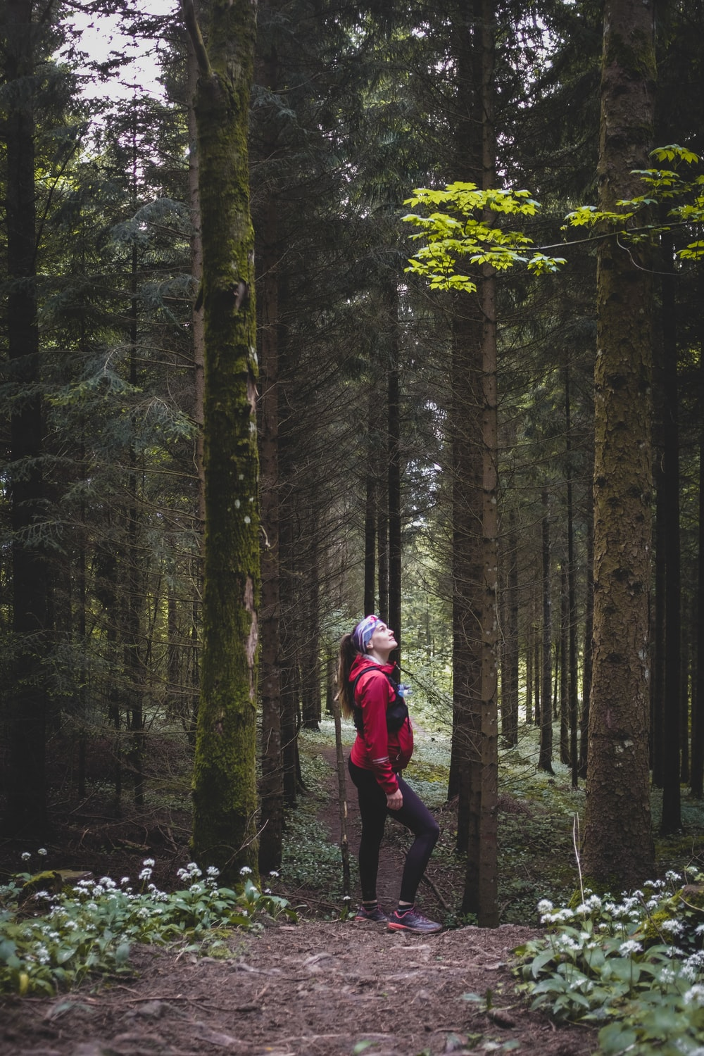 woman in red jacket and black pants walking on forest during daytime