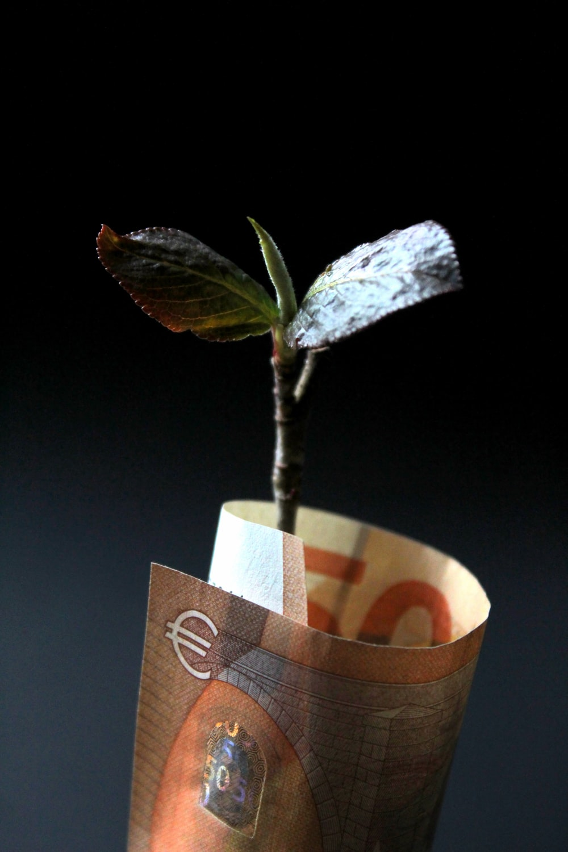 Einnahmen aus der AirBnB-Vermietung: Rendite, Cashflow, Gewinn, Investment, Immobilie
