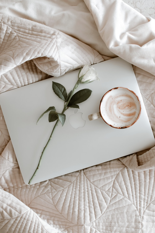 hoja verde en plato de cerámica blanca