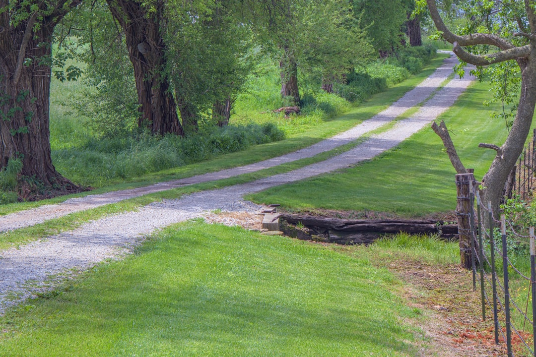 The Lane.