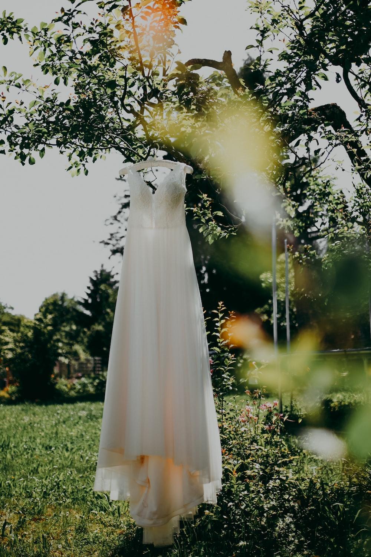 white dress on green grass field during daytime