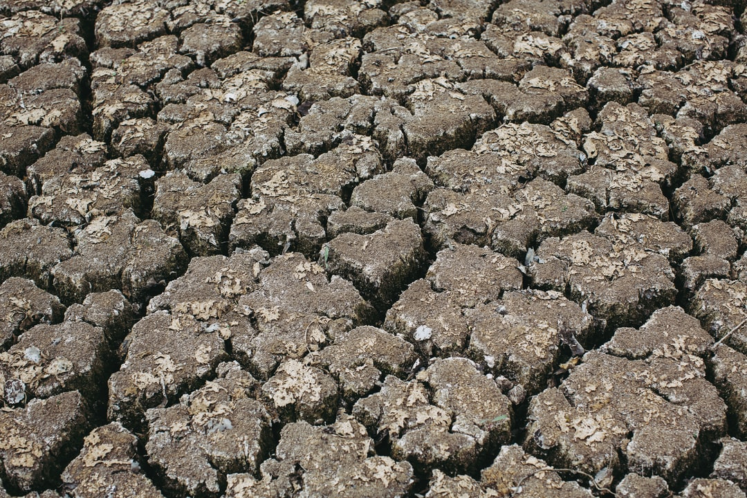 Dried up river bed – absolute drought, aridity, meagerness