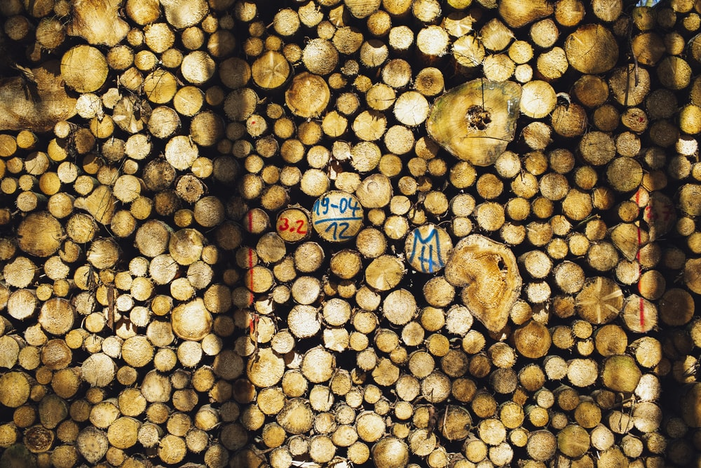 brown wooden logs with blue and white plastic cups