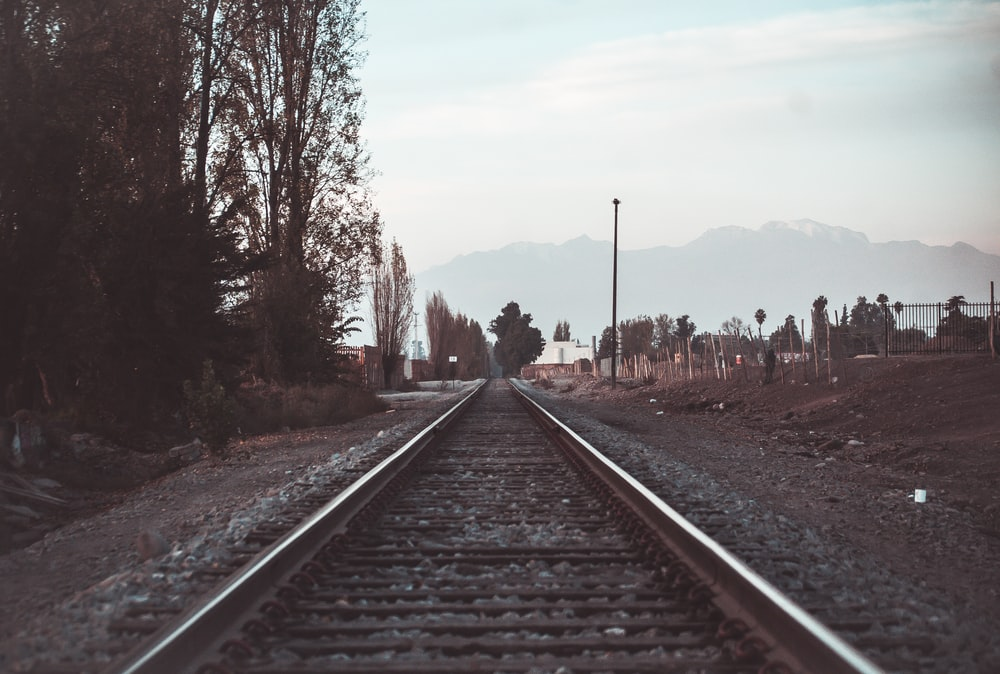 train rail near bare trees during daytime