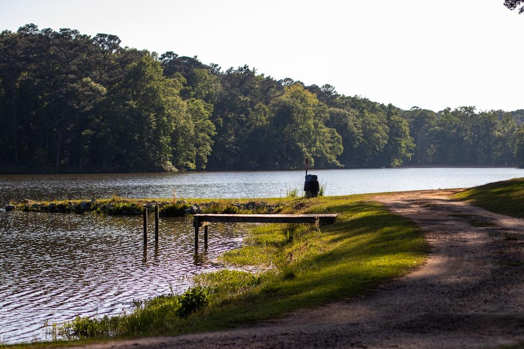 Lake day.