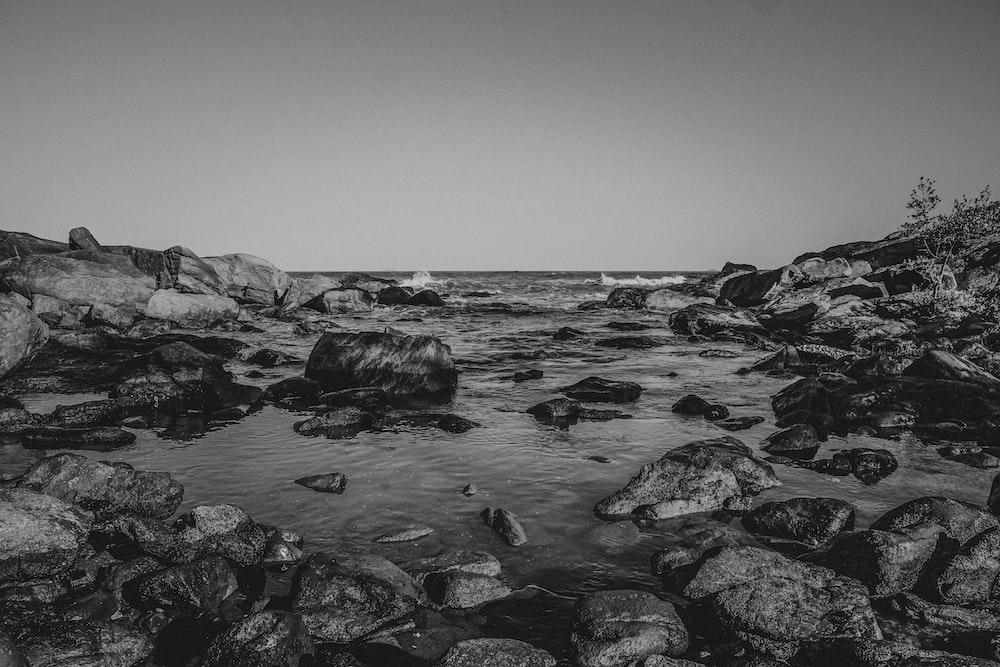 grayscale photo of rocky shore